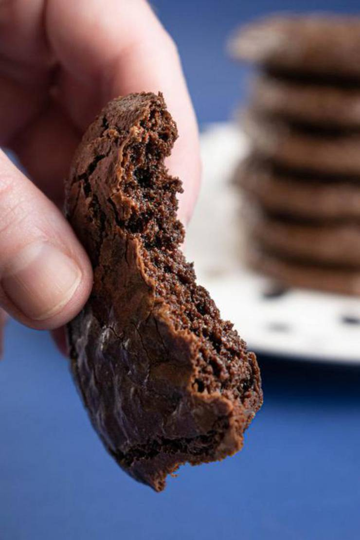 Best Keto Cookies Low Carb Keto Chocolate Fudge Brownie Cookies Idea Quick Easy Ketogenic Diet Recipe Completely Keto Friendly