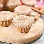 BEST Keto Muffins! Low Carb Keto Cinnamon Sugar Mini Muffin Bites Idea – Quick & Easy Ketogenic Diet Recipe – Breakfast – Snack – Dessert